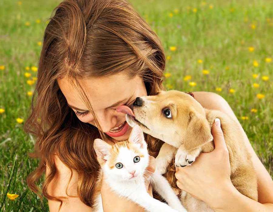اكتشفي الحيوان الأليف المناسب لشخصيتك وتصرفاتك