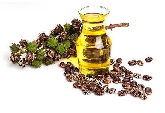 أهم فوائد لزيت الخروع للبشرة والشعر