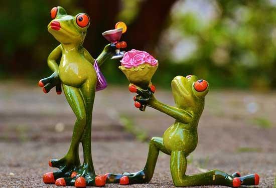 كيف تجعلينه يرغب في الزواج منكِ بخطوات بسيطة