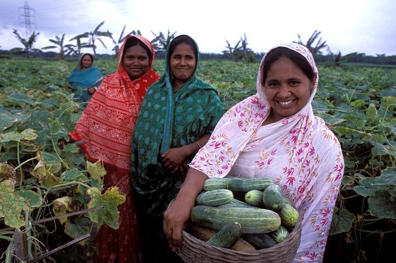 العالم يحتفل باليوم الدولي للمرأة الريفية