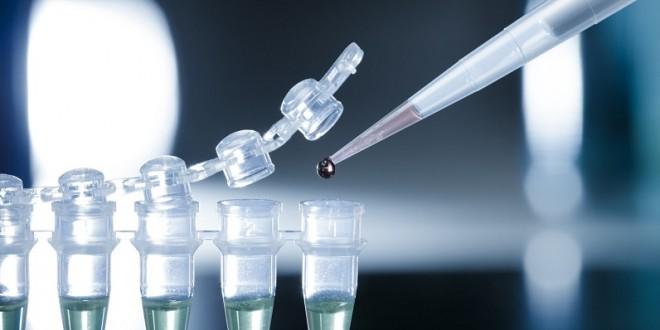 """""""البحوث العلمية""""..المصدر الأساسي للمعرفة"""