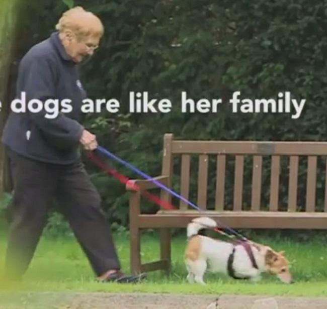 """امرأة تسعينية تعمل بـ """"تمشية"""" الكلاب"""