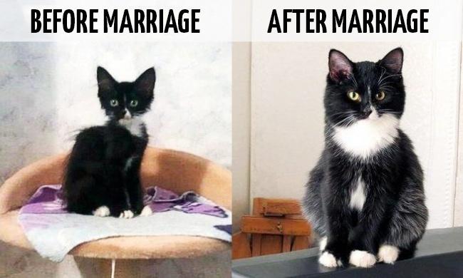 بالصور..الحياة قبل الزواج وبعده