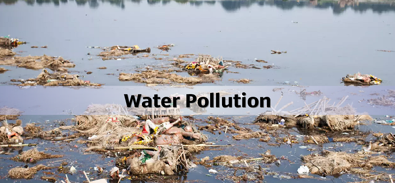 effects of water pollution Effects of water pollution water borne diseases chemicals were leached out of polluted earth the kinds of chemical contamination above are regarded as point sources of pollution of water.