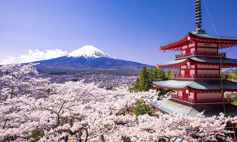 18 سبب يدفعونك لزيارة اليابان