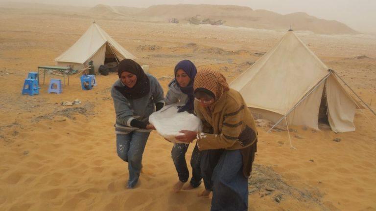باحثات مصريات يكتشفن حفرية ديناصور جديد بالواحات