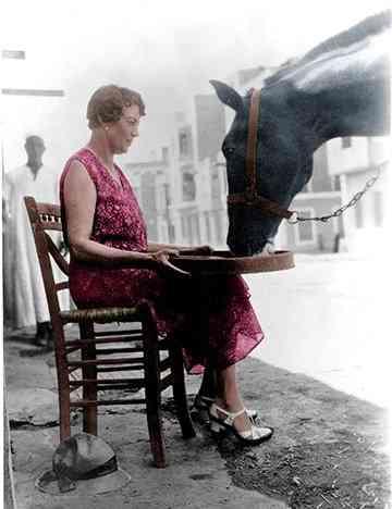 دوروثي بروك الإنجليزية التي أنقذت الخيول في مصر