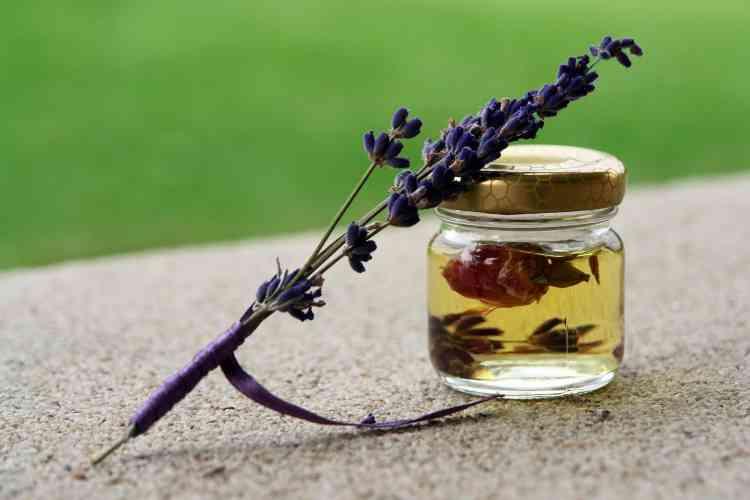 زيت شجرة الشاي واستخداماته لبشرة نضرة وشعر قوي