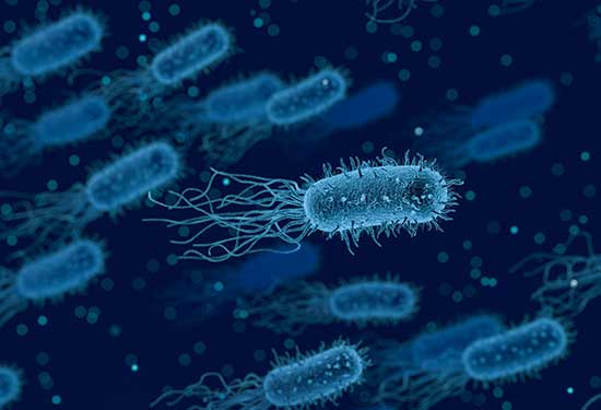علاج جرثومة المعدة وتجنب أضراها على الصحة