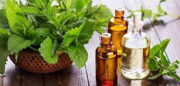 فوائد زيت الشاي الأخضر الساحرة لبشرة نضرة وشعر صحي