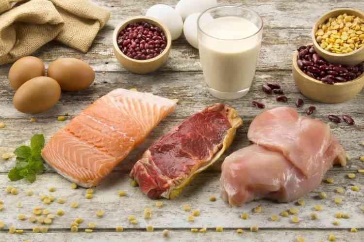 مصادر البروتين الحيواني وأوجه التشابه بينه وبين البروتين النباتي