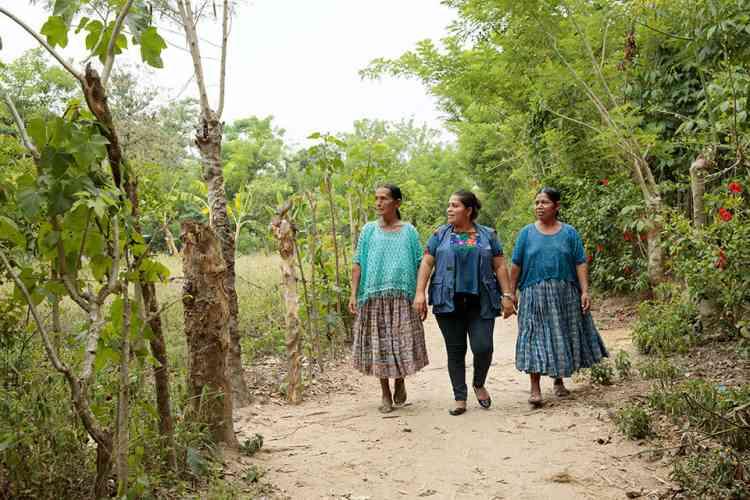 ناجيات من الإتجار بالبشر في نشرة الأمم المتحدة للمرأة