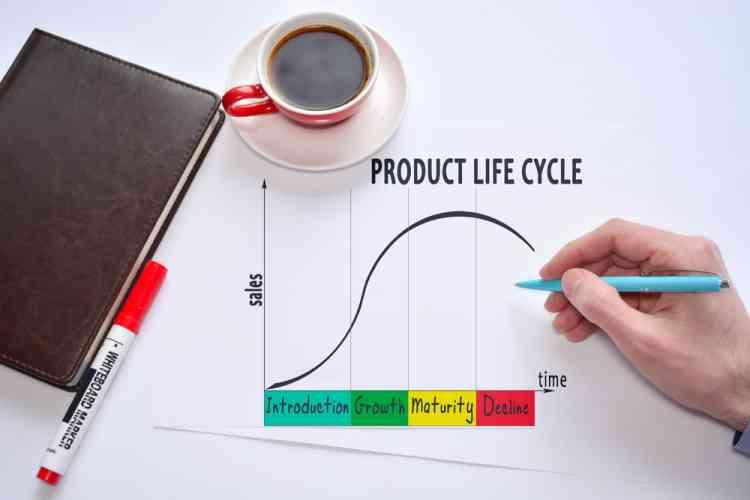دورة حياة المنتج وأهمية كل مرحلة