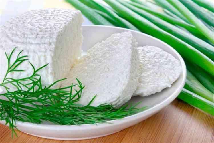 فوائد الجبنة القريش لنظام غذائي صحي وخفيف