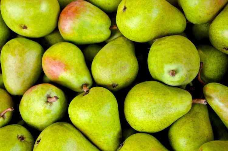 فوائد الكمثرى فاكهة الخريف الغنية بالعناصر الغذائية