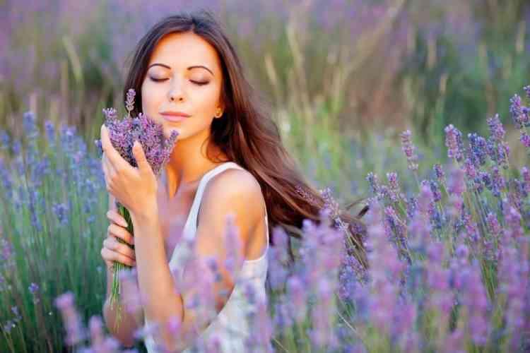 فوائد زيت اللافندر للبشرة وعلاج مشكلات الشعر