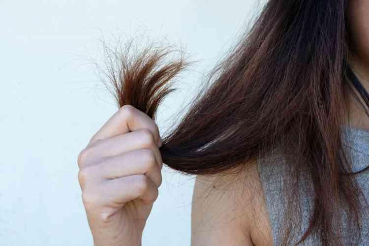 وصفات لتنعيم الشعر الجاف بطرق ومكونات طبيعية