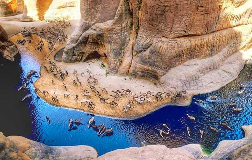 محمية وادي الجمال