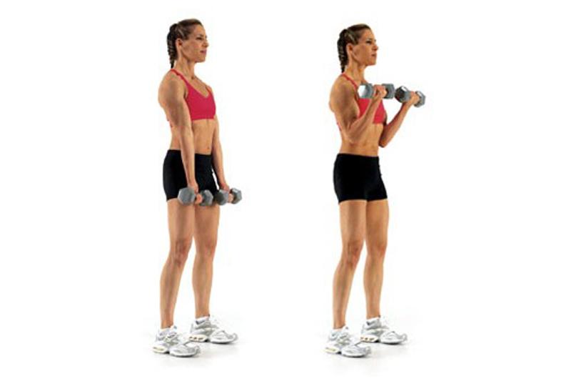 تمرين عضلة الذراع الأمامية