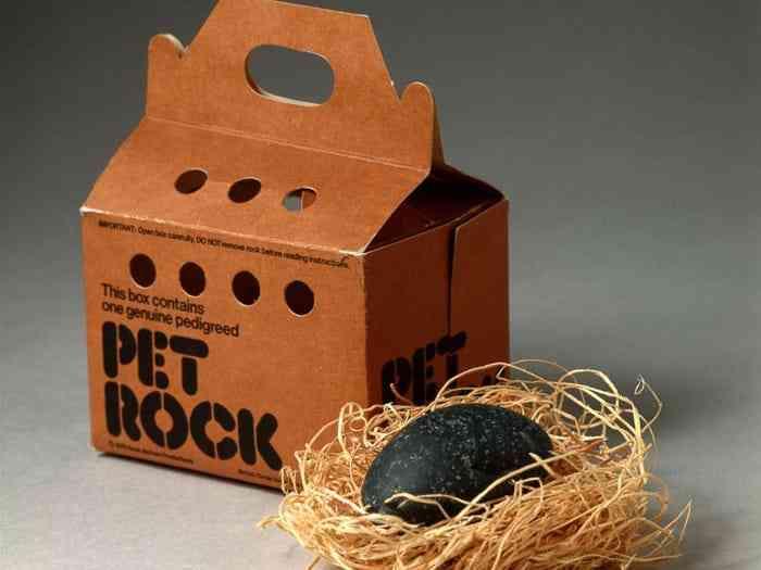 صخرة الحيوانات الأليفة
