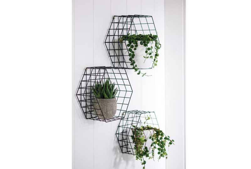 ديكورات حوائط بالنباتات
