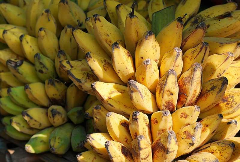أهم فوائد الموز للجسم والصحة