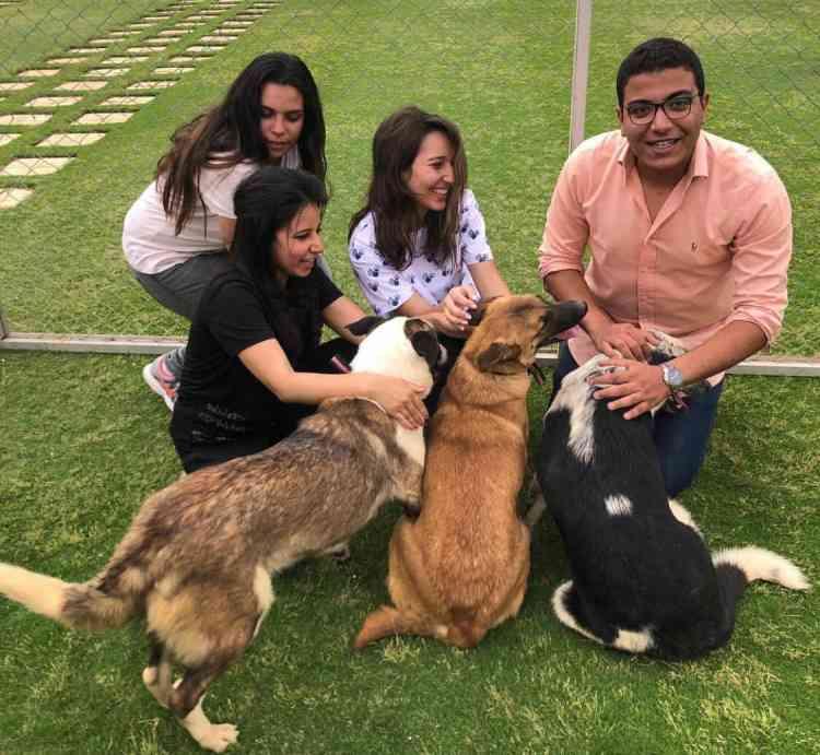 زينة حلمي والوعي بحقوق الحيوانات ARA