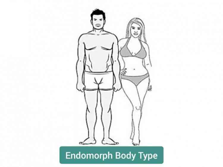 أنواع الأجسام نوع الجسم الإندومورف