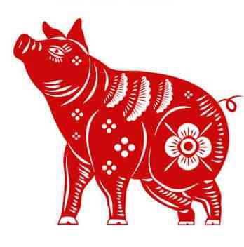 الأبراج الصينية برج الخنزير