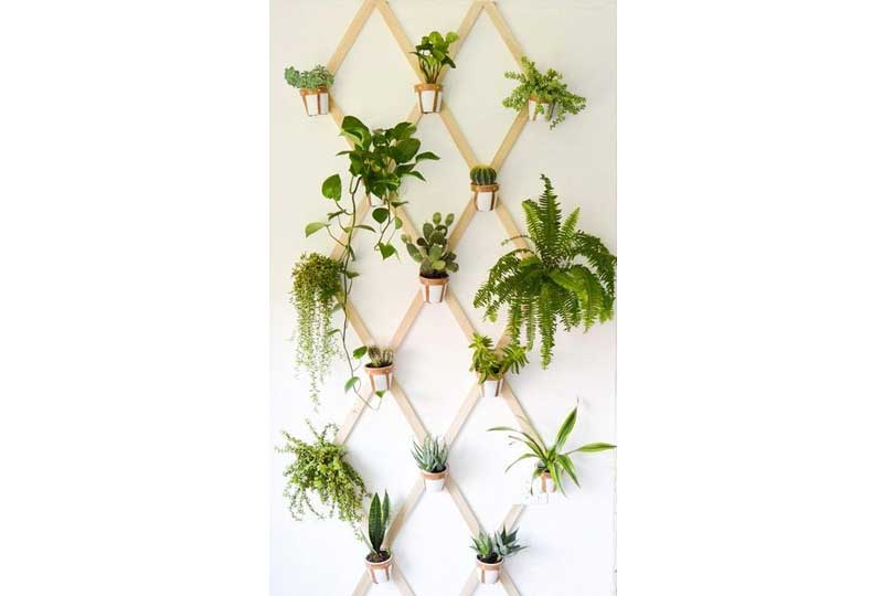 ديكورات حوائط بالنباتات مع الخشب