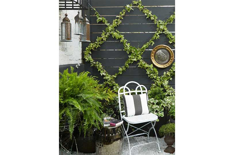 ديكورات حوائط بالنباتات لديكور خارجي