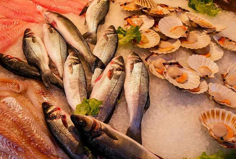 السمك يقدم أوميجا 3 للجسم